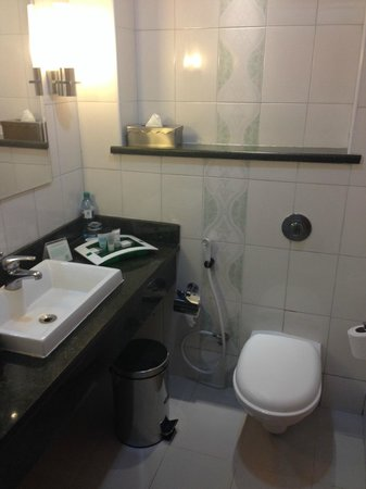 Holiday Inn Dar Es Salaam City Centre: Sink/toilet