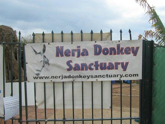 Nerja Donkey Sanctuary : de entree