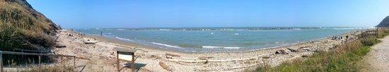 Parc naturel Monte San Bartolo : Spiaggia di Fiorenzuola  di Focara