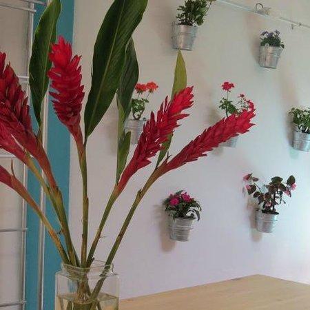 Restaurant Belil: flores en Belil