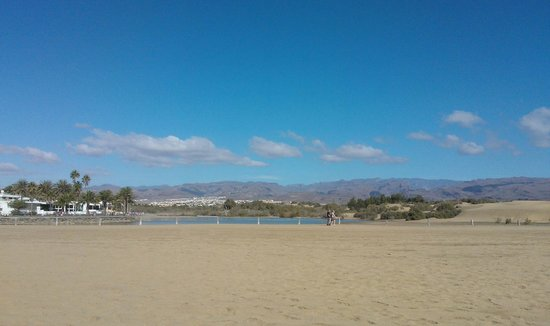 Maspalomas Oasis Club: Beach