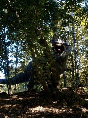 DinoPark Vyskov: Tyrannosaurus