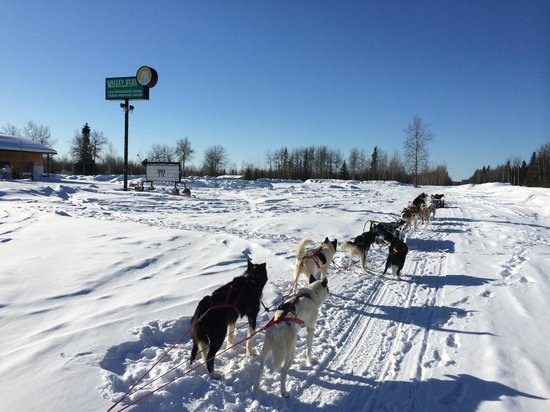 Muzzy's Place Dogsled Adventure -  Day Tours: Stop at a local store