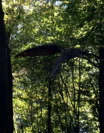 DinoPark Vyskov : Fliegender Di no