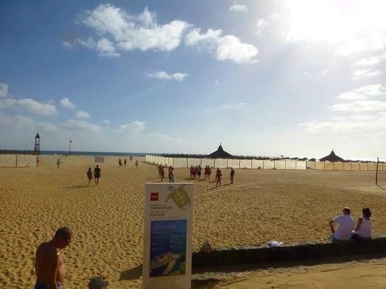 Hotel Riu Touareg: Beach Area