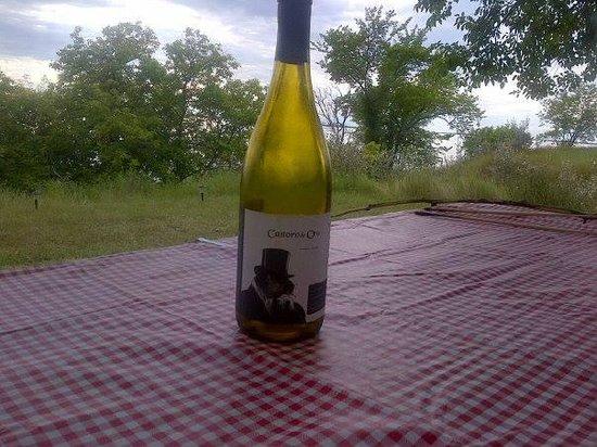 Castoro de Oro Estate Winery: One of my faves:  Castoro de Oro 2008 Gewurtraminer
