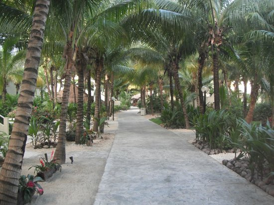 Sensimar Seaside Suites & Spa: Well kept grounds