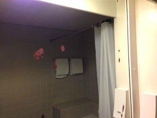 Hotel Alstor: Flekker i speilet