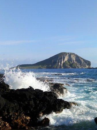 Oahu Photography Tours Tripadvisor
