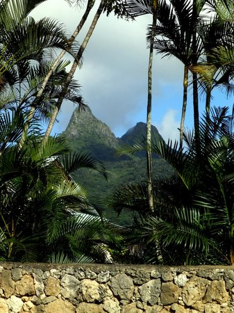 Oahu Photography Tours: The Mountains