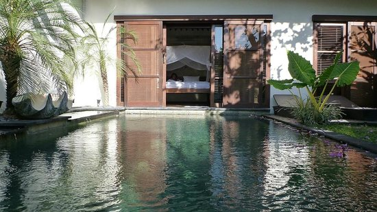 Ellora Villas : our private pool