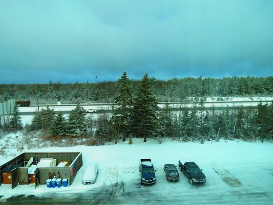 Holiday Inn Express Hotel & Suites Halifax Airport: view from room
