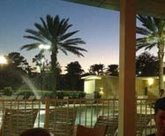 Holiday Inn Orlando – Disney Springs Area : Poolside