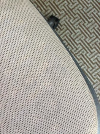 Hyatt Regency Boston: stained desk chair - gross