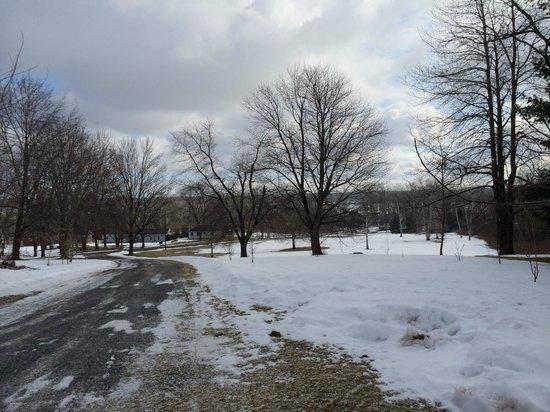 John Morris Manor Bed & Breakfast : View to Cayuga Lake