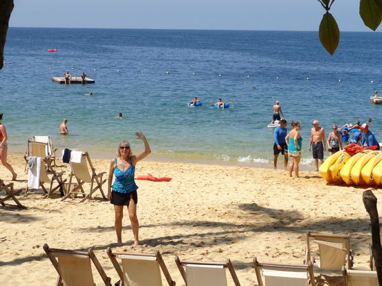 Vallarta Adventures - Las Caletas Beach Hideaway : Beautful Beach with chairs, hammocks further back