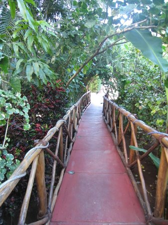 Casa Hamaca Guesthouse: You enter the guest house by a 'jungly' bridge