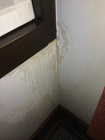 Hotel Palazzo Giovanelli : Badly patched wall repair