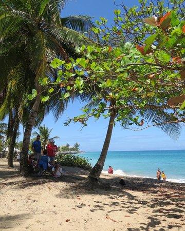 Tres Palmas Inn: beach area