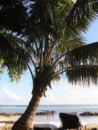 Tamassa: On the beach