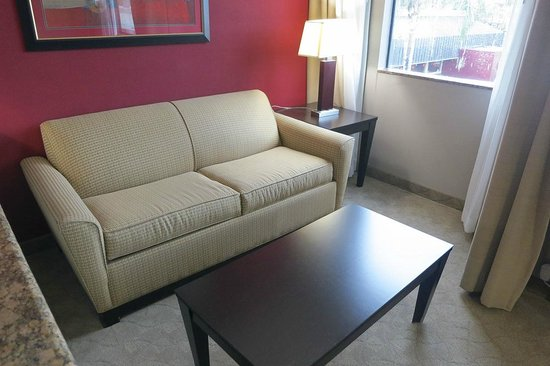 Holiday Inn Hotel & Suites Anaheim - Fullerton : Room had a sofa also