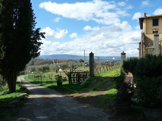 Niccoli Limousine Service - Private Tours: The beautiful countryside of Tuscany