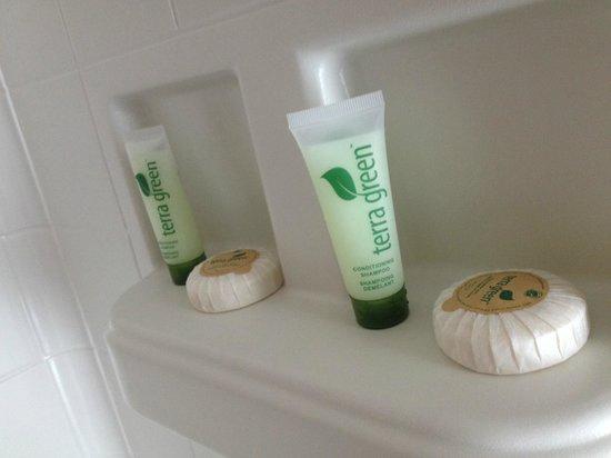 Nicholson House Inn: Bathroom supplies