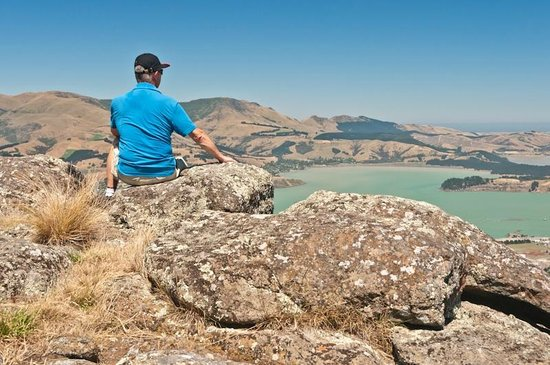 Port Hills: A nice spot to take in the views of Lyttleton Harbour.