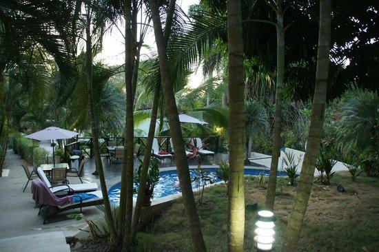 Hotel Oasis: Piscine