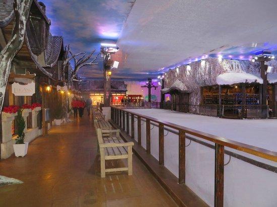 Snowland: Pista de gelo e lojas