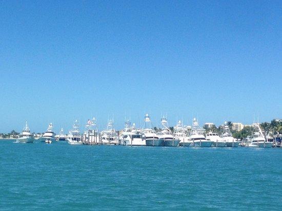 Sailfish Marina Resort : View of marina from the intercoastal
