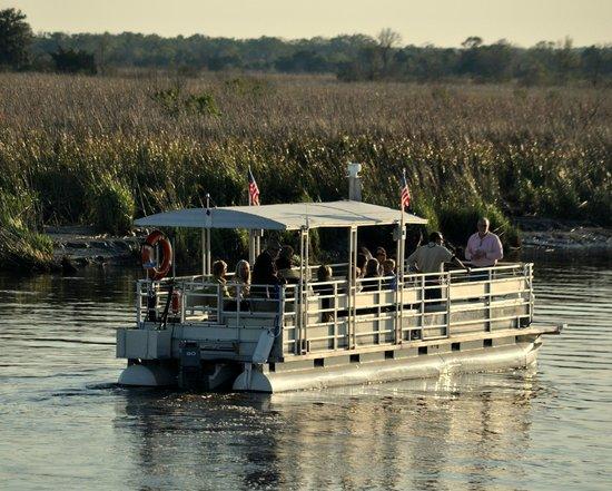 Darien River Wine and ECO Cruise: Cathead Creek