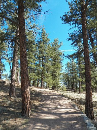 Florissant Fossil Beds National Monument: Hiking Trial
