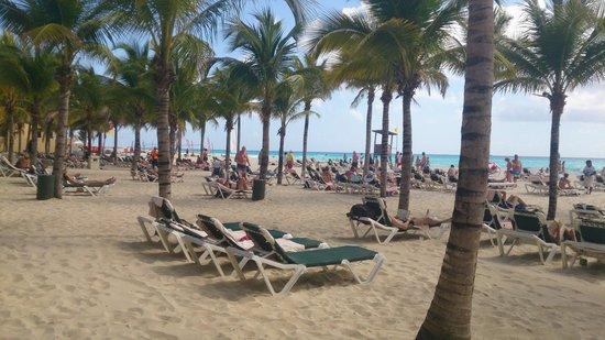 Hotel Riu Playacar: PLAYA DEL HOTEL CON REPOSERAS