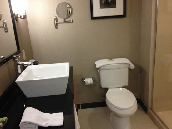 Cambria Hotel & Suites Fort Lauderdale, Airport South & Cruise Port : Clean bathroom