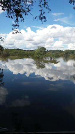 Cuyabeno Lodge: view from the dock