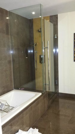 JW Marriott Marquis Miami: Nice shower with handshower and overhead
