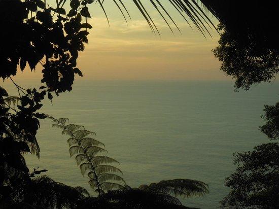 Bosque del Cabo Rainforest Lodge: View from Lapa