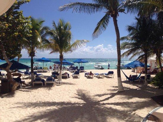 Playa Palms Beach Hotel: La playa