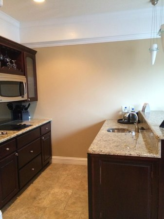 Camden on the Lake Resort: Kitchenette