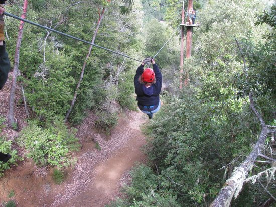Sonoma Canopy Tours: Bunny Line