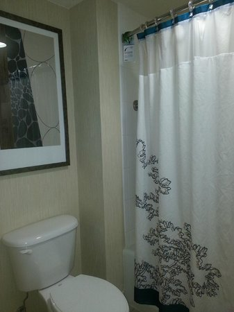 Residence Inn Greenbelt: Pretty Shower Curtain with liner in a nice bathroom.
