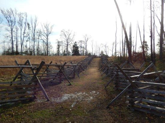 Gaines' Mill Battlefield: The Watt Farm Road