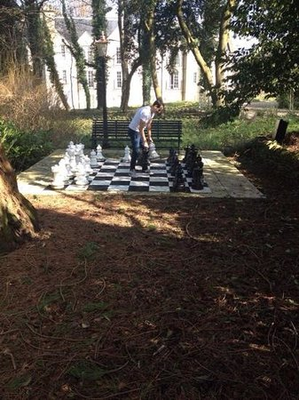 Rudloe Arms: Anyone for a spot of Chess??
