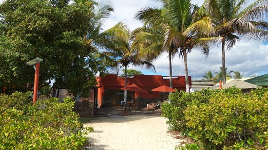 Red Mangrove: Red Adventure lodge at Isabela island, Galapagos