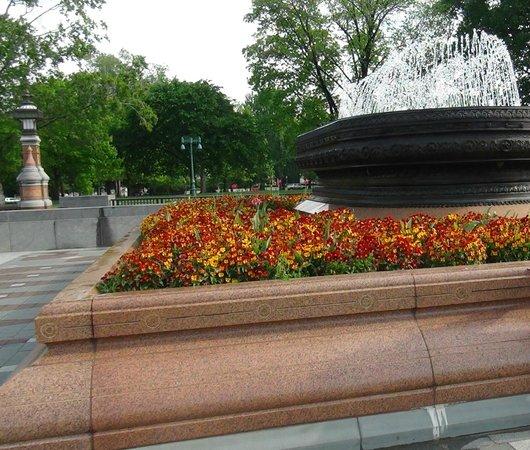 U.S. Capitol: Plaza frente El Capitolio