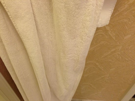 The Ritz-Carlton, Amelia Island: stained, threadbare towel