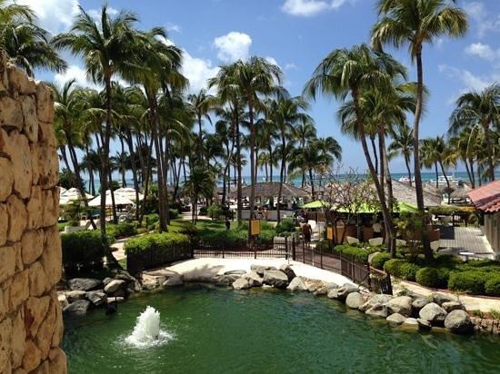 Hyatt Regency Aruba Resort and Casino: lush landscaping
