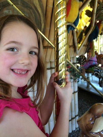 Tampa's Lowry Park Zoo: Carousel