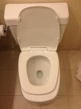 Hilton Phoenix Airport : Toilet seat does not fit toilet - was very gross to sit on